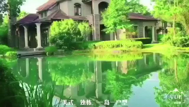 香林群岛视频