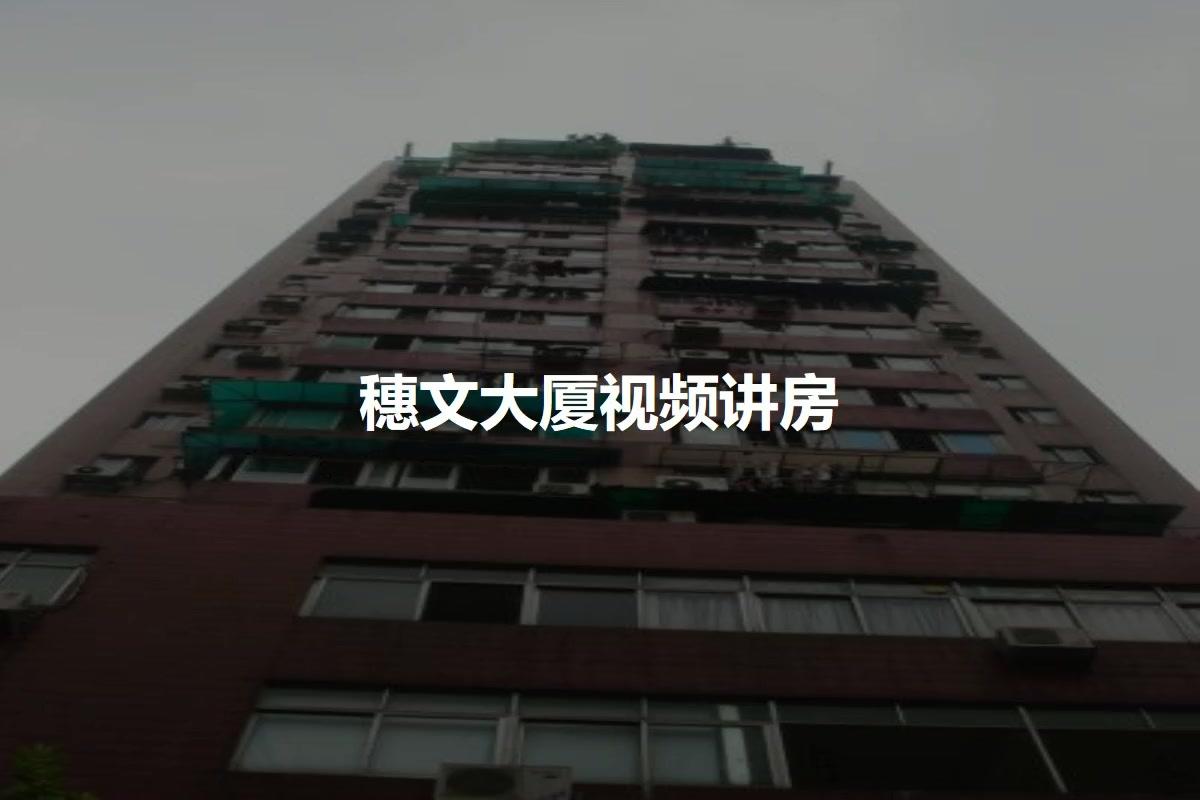 穗文大厦视频