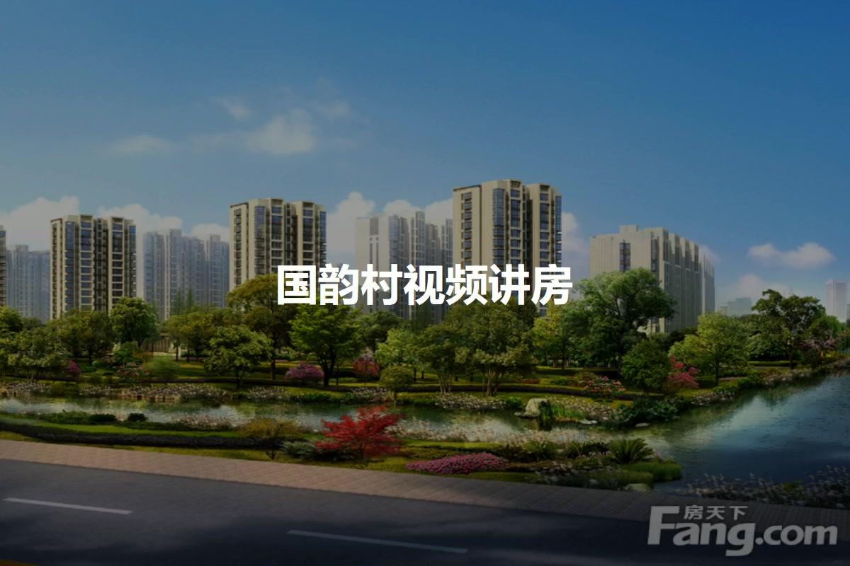 国韵村视频