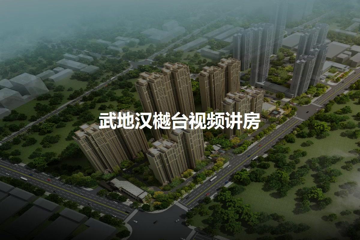 武地汉樾台视频