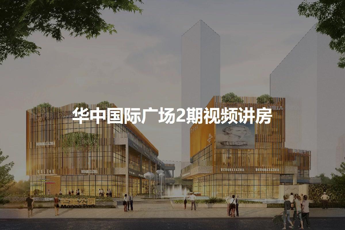 华中国际广场2期视频