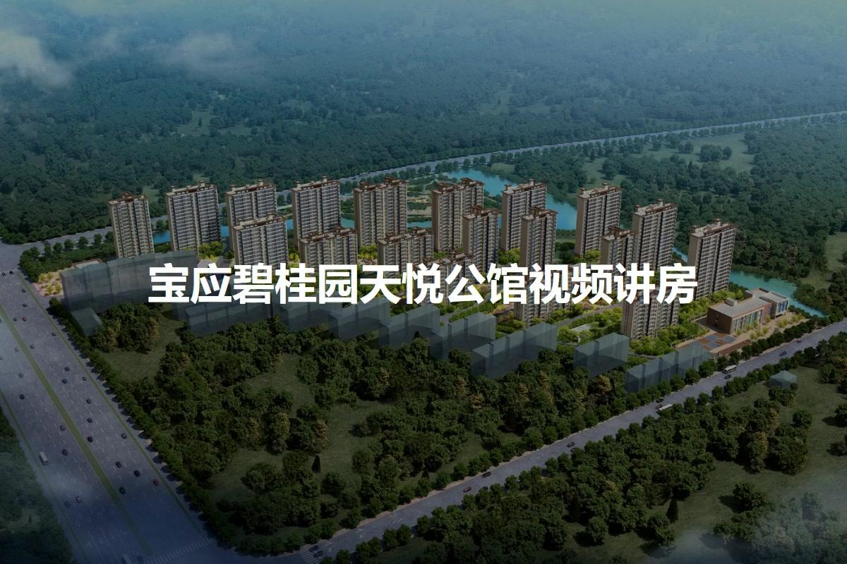宝应碧桂园天悦公馆视频