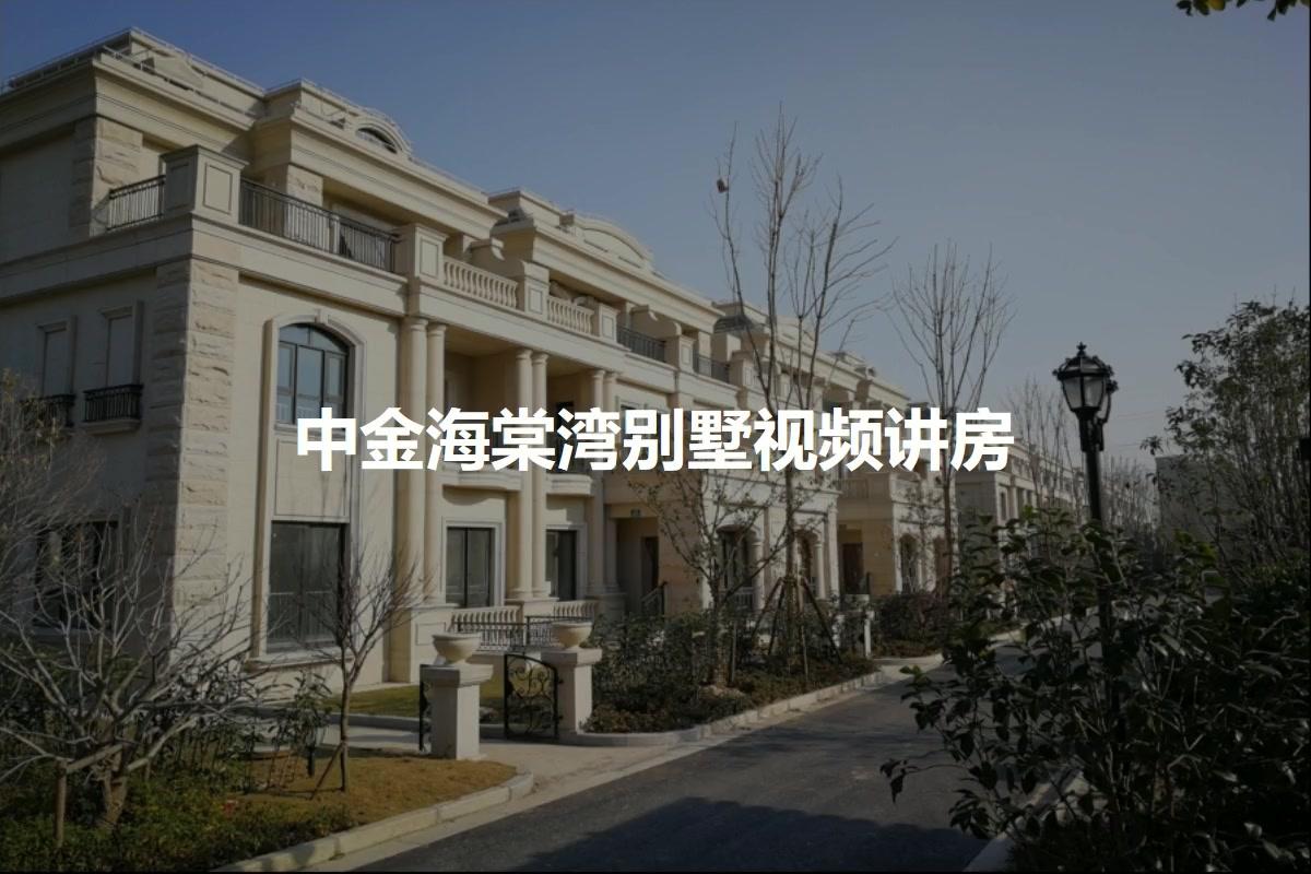 中金海棠湾别墅