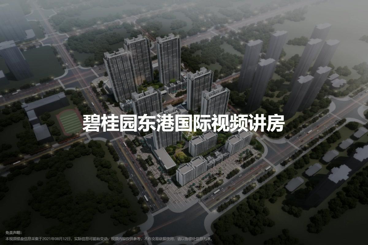 碧桂园东港国际视频