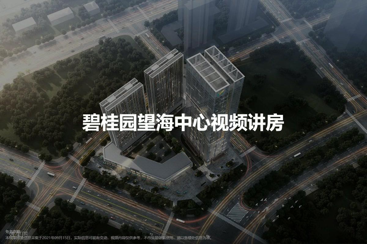 碧桂园望海中心视频